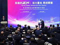 外交部举办湖北全球特别推介活动