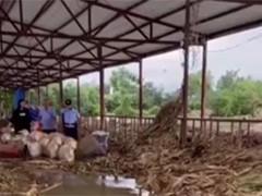 河南南阳:洪水袭来 20多只羊坐上大铲车被转移